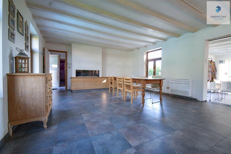 CHARMANTE HOEVE met 18de eeuwse SCHUUR, bijhuis/poolhouse en ZWEMBAD op ca 4550m² - 19